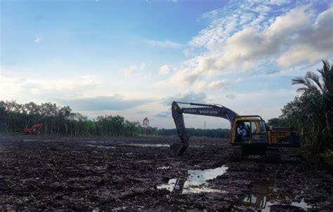 Pisau Hutan serap produksi hutan rakyat presiden dorong kerjasama