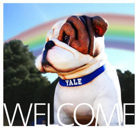 Welcome Weekend 2017 Yale Mba by Welcome Yale College Class Of 2021 Office Of Lgbtq