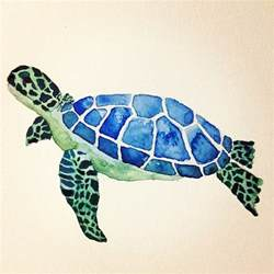 color of turtles sea turtle water color painting i made my personal pins