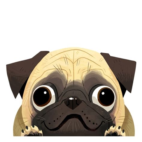 pug sticker pug car decal sticker