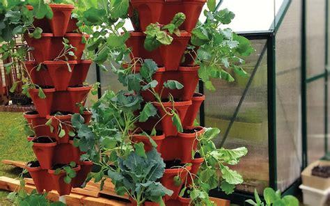 container garden ideas  home depot