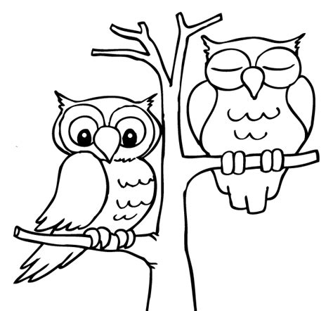 sleeping owl coloring page sleeping owls gif by darkmagic 12 photobucket