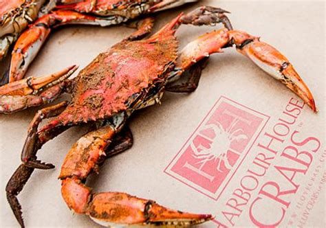 harbor house crabs harbor house crabs 28 images harbor house crabs fancy harbour house crabs image