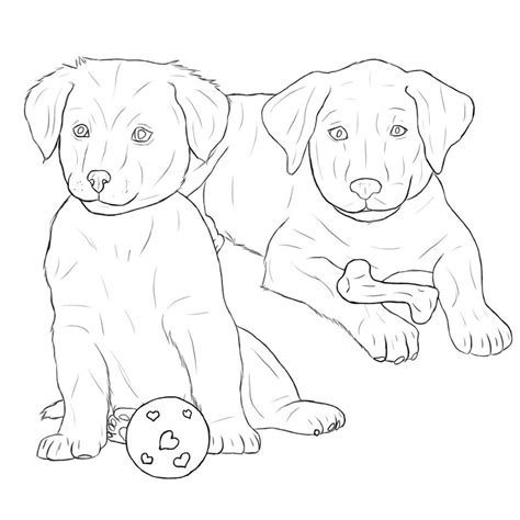 chocolate lab free coloring pages