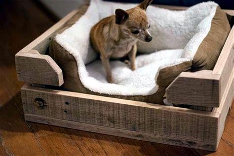 great dog beds  euro pallets  dog