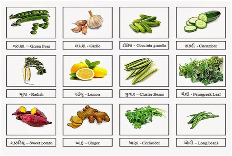 vegetables names vegetable names amazing wallpapers