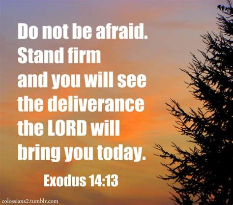 8 Reasons Not To Be Afraid To See Your Doctor by You Will See The And The Lord On