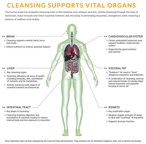 Organ Cleanses Detox by Cleanse For Nutritional Cleansing 30 Day Cleanse