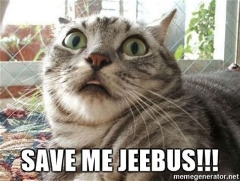 Scared Cat Meme - save me jeebus scared cat meme generator