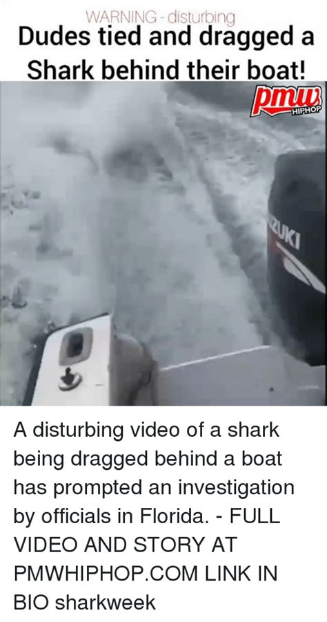man dragged shark behind boat 25 best memes about dragged dragged memes