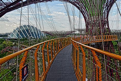 Tiket Garden By The Bay Singapore Dewasa Ocbc Skyway garden by the bay ga perlu keliling dunia untuk lihat