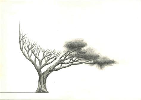 imagenes realistas de un arbol asociaci 243 n aragonesa de cr 237 ticos de arte