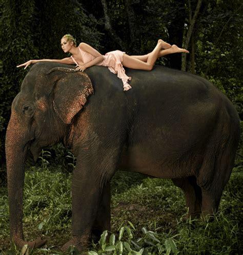 best photoshoot best antm photo shoots popsugar