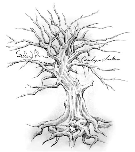 tree drawing 25 beautiful tree drawing exles from around the world