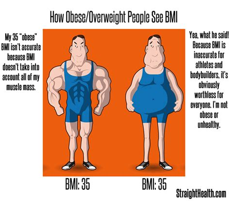 Obese Meme - found this on accident not sure if repost fatpeoplehate