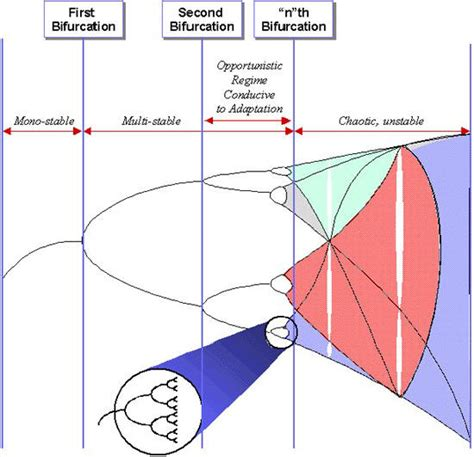 non linear pattern exles evolutionary economic theory
