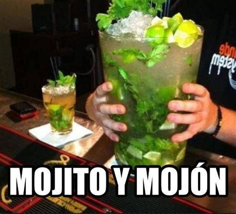 Cocktail Meme - 223 best images about happy hour on pinterest funny