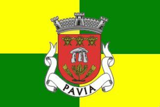 flag pavia pavia commune portugal