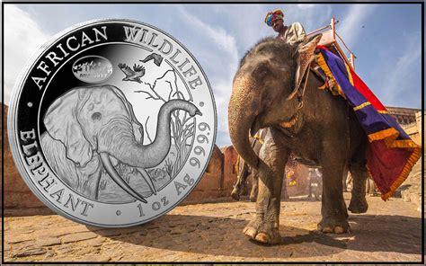 Somalia Calend 2018 Somali Elephant Design For 2018 Revealed On Limited Run