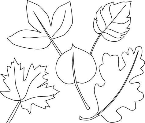 coloring pages jungle leaves 9 jungle coloring pages jpg ai illustrator download