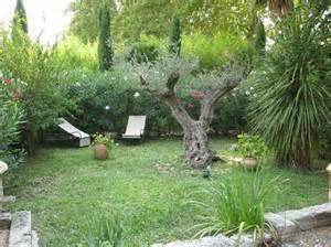 giardino con ulivo giardino con ulivi foto di la banasti 232 re vedene