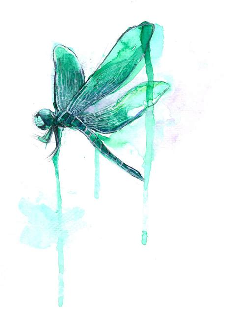 watercolor tattoo dragonfly dragonfly watercolor related keywords dragonfly