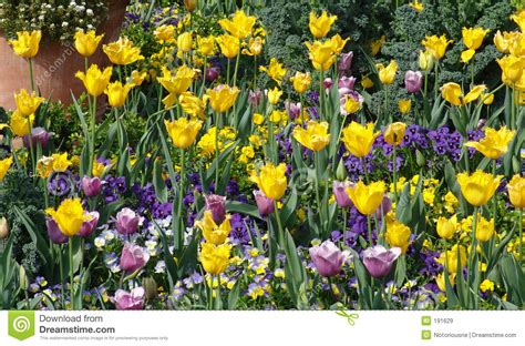 bed of flowers bed of flowers royalty free stock images image 191629