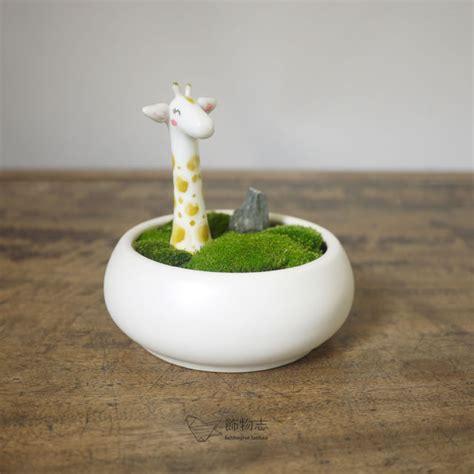 cute flower pots accoutering ceramic flower pot fleshier plant small flower