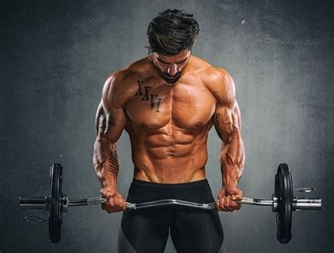what are the best exercises and workout routines to build abdominal quora