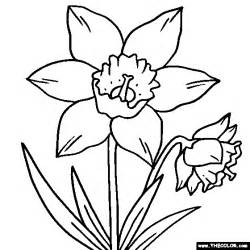 daffodil color coloring pages starting with the letter d