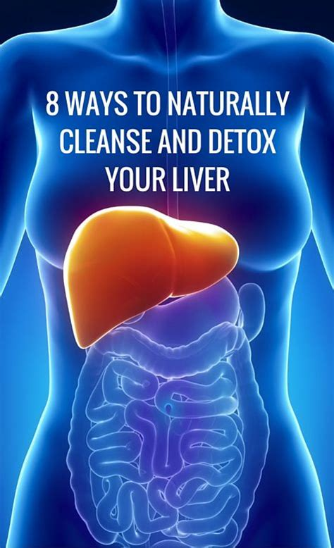 Is Detoxing For Your Liver by 17 Best Images About Health Detox And Healing On