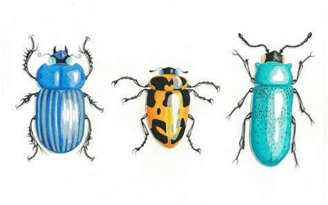 bugs three com three beetle bugs by art in murder on deviantart