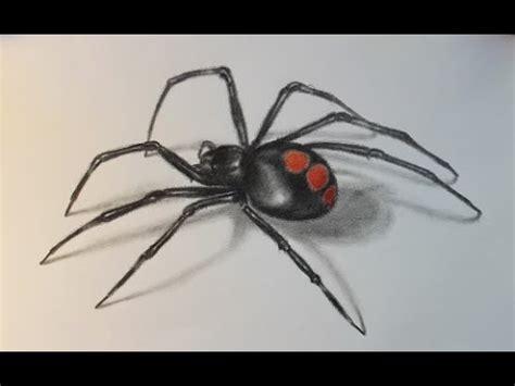 drawing amp demo juvenile black widow spider f h b