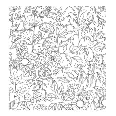 secret garden colouring book qbd free coloring pages of my secret garden