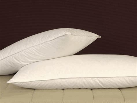 and feather pillow pillows 100 duck feather pillow sleep with