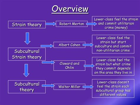 crime pattern theory exles crime and deviance complete revision