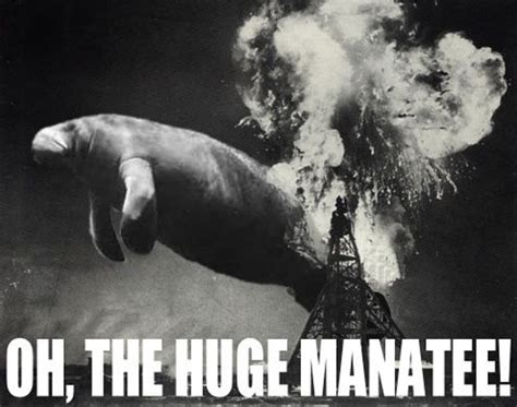 Oh The Humanity Meme - oh the huge manatee know your meme