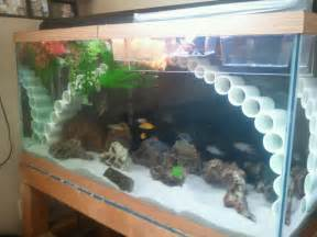 Decoration Of Aquarium by Awesome Cichlid Tank Decorations 2 Decorations For Fish