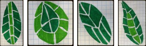 mosaic pattern on leaves learn how to create mosaic leaves australia s largest