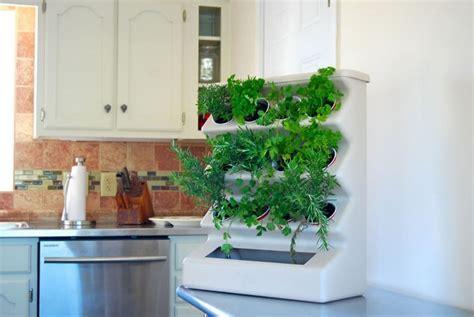 herbe aromatique cuisine d 233 co cuisine en herbes aromatiques en pots en 20 id 233 es cool