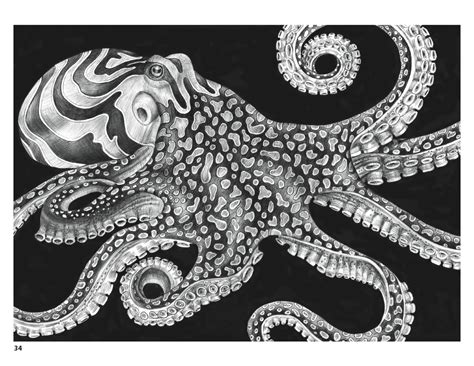 intricate animals coloring pages