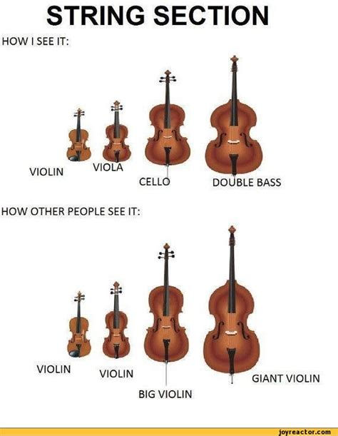 when to section someone section violin how other people see it string funny
