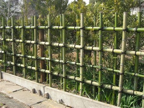 Fancy Storage Sheds 29 best images about bamboo fences on pinterest gardens