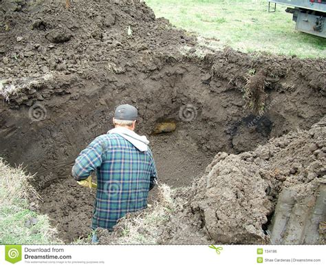 digging in backyard digging a hole royalty free stock image image 134186
