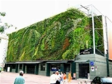 giardini verticali prezzi giardino verticale giardino in terrazzo