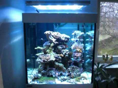 eheim led beleuchtung scube cube 270 marine doovi