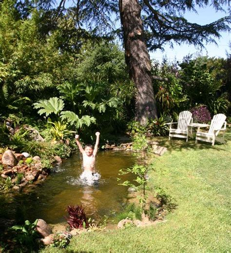 Pinterest The World S Catalog Of Ideas Backyard Swimming Ponds