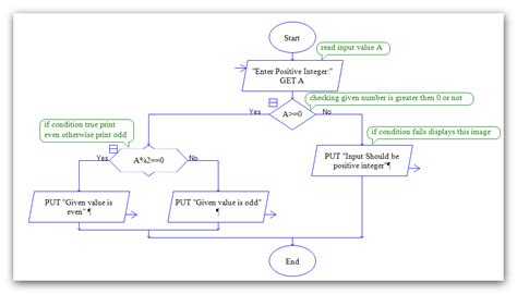 flowchart raptor write the algorithm and draw flowchart to find roots of a
