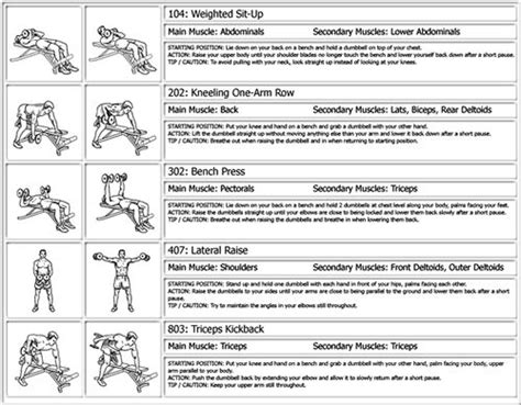 workout routines beginners workout routine print preview