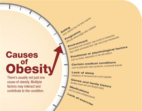 10 Causes Of Obesity by America S Battle Against Obesity Bay State Banner